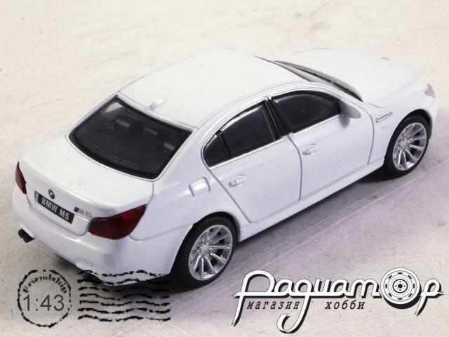 BMW 5-series (2003) Rastar (B)