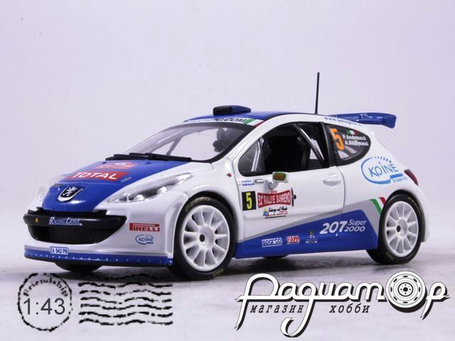 Peugeot 207 S2000 P.Andreucci A.Andreussi Rally Sanremo (2010) AR45