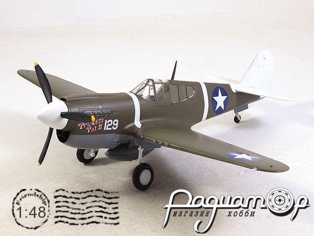 Curtiss P-40M Warhawk, 44FS, 18FG (1945) 39311