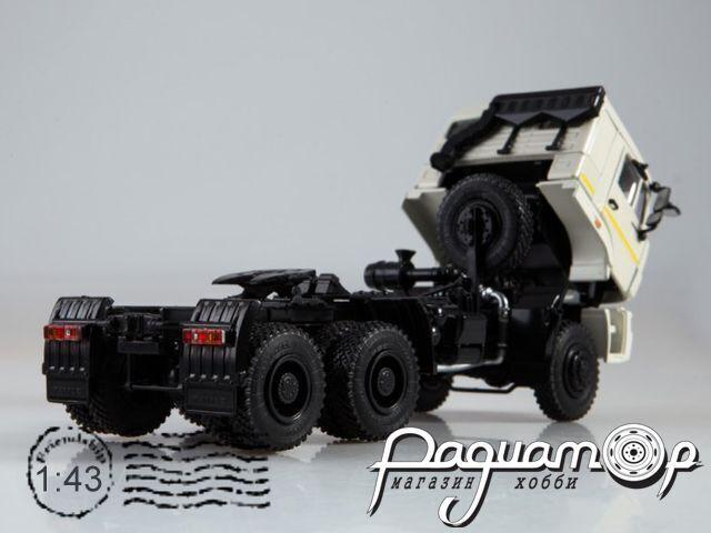 КАМАЗ-65225 седельный тягач (2006) 102712