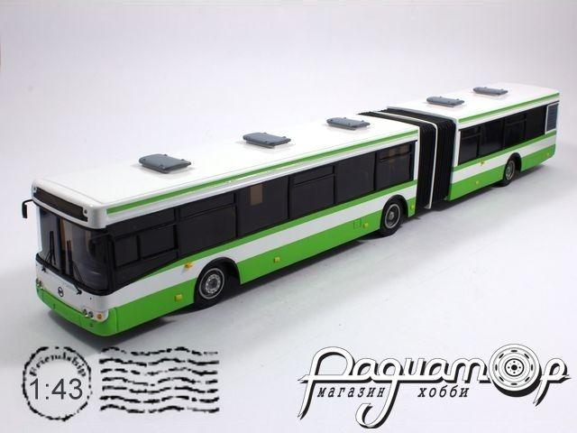 ЛиАЗ-6213 (2007) 12-10
